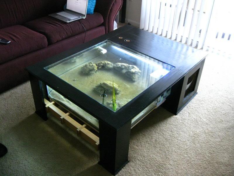 Table basse aquarium diy