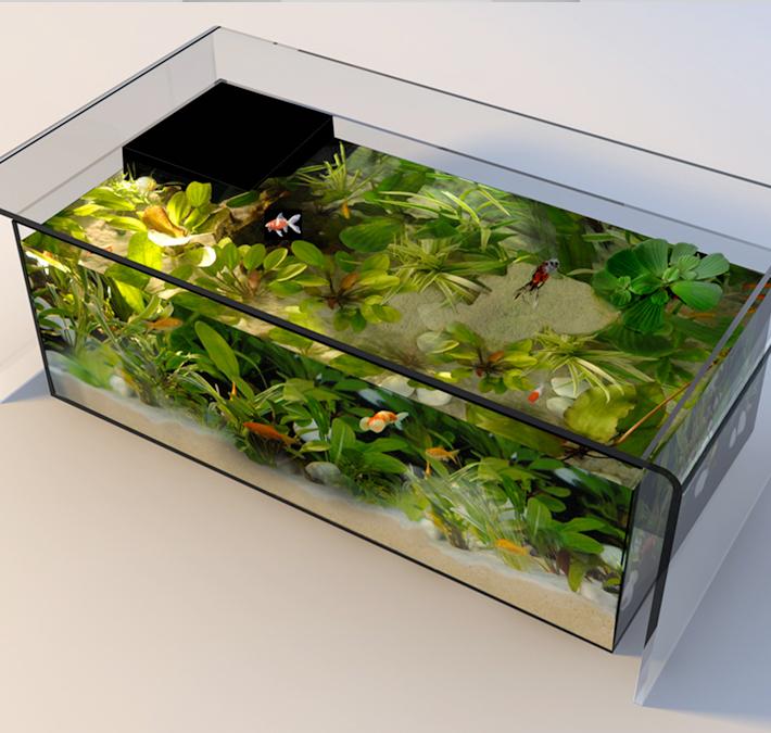 Table basse aquarium noir et blanc