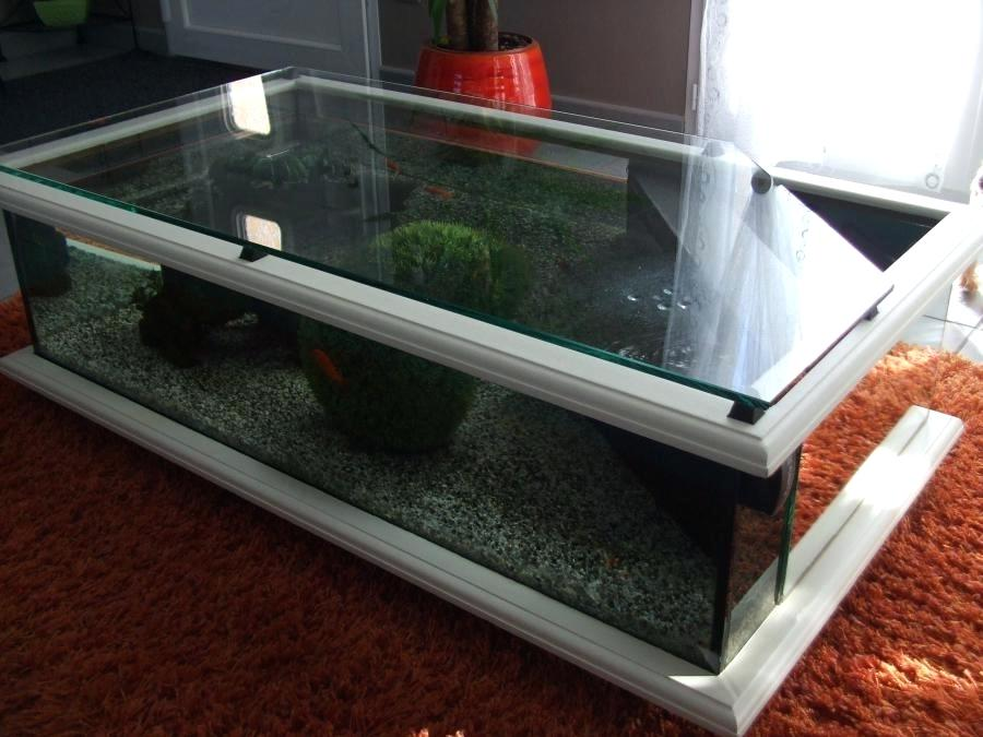 table basse aquarium fait maison id e de maison et d co. Black Bedroom Furniture Sets. Home Design Ideas