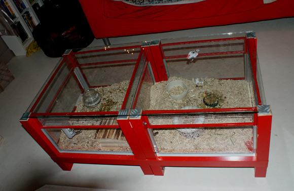 Aquarium Idée Déco De Maison Table Fabrication D'une Et Basse 3L5R4Aqcj